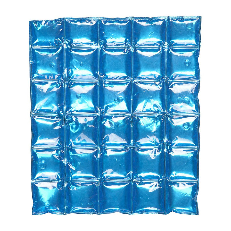Ice-pack voor coolerbags