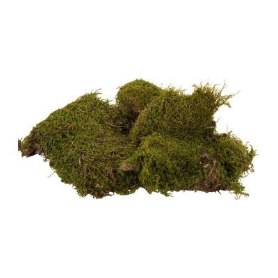 Mos - 80 gram - groen