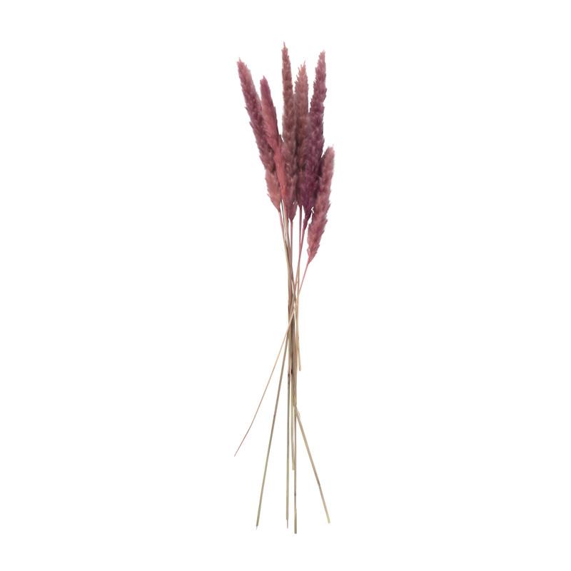 Pluim - lichtroze - 60 cm