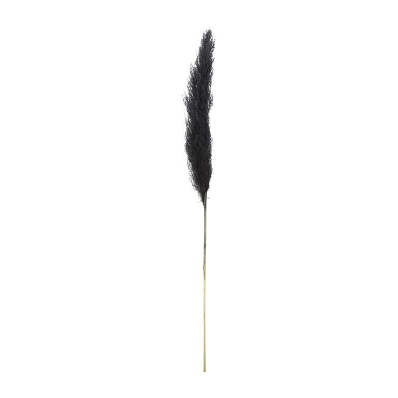 Pampas - zwart - 115 cm