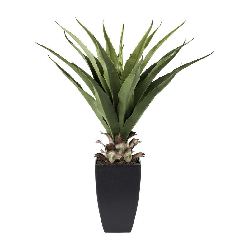 Aloë kunstplant - 75 cm