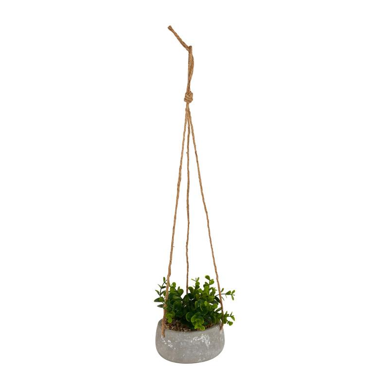 Plantenhanger vetplant - Ø13x14 cm
