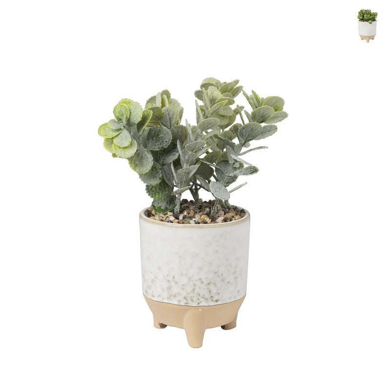 Plantje in keramiek potje - ⌀10x22 cm
