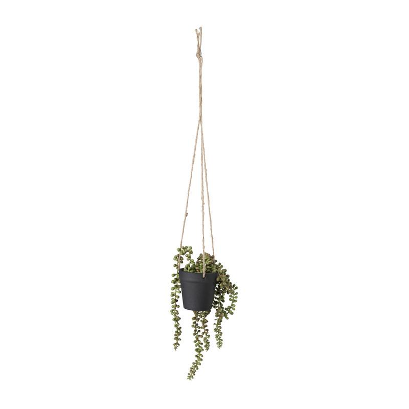 Hangplantje in pot - zwart - 9x9x70 cm