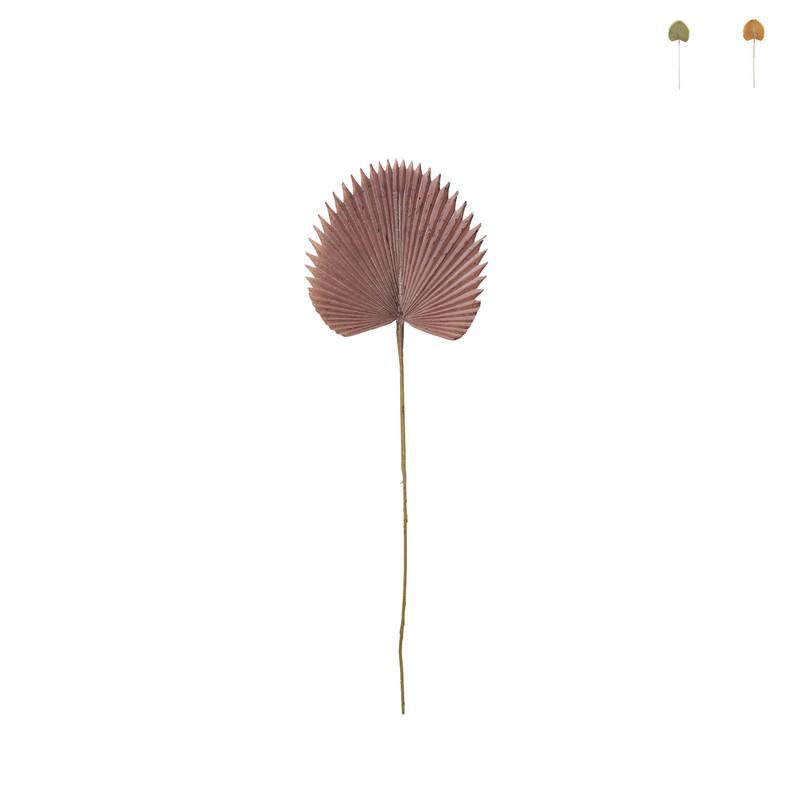 Palmblad waaier - diverse varianten - 77 cm