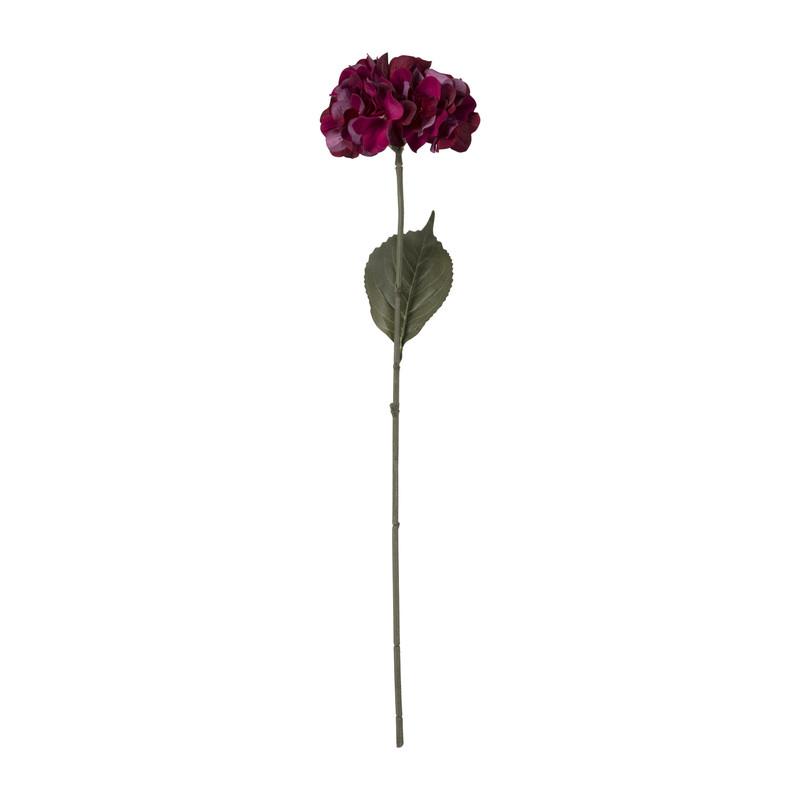 Hortensia - bordeaux/paars - 73 cm