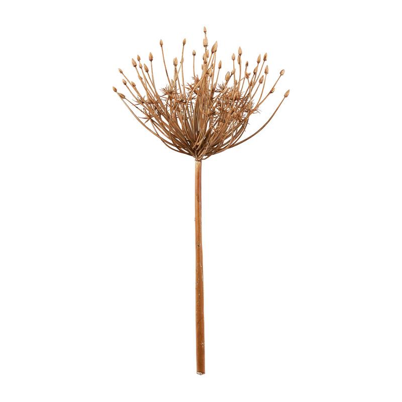Allium grote knoppen - 53 cm