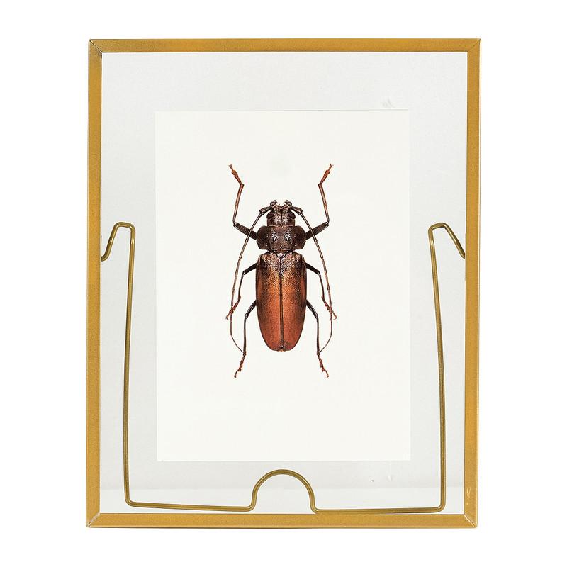 Fotolijst transparant staand - goud - 25x20 cm