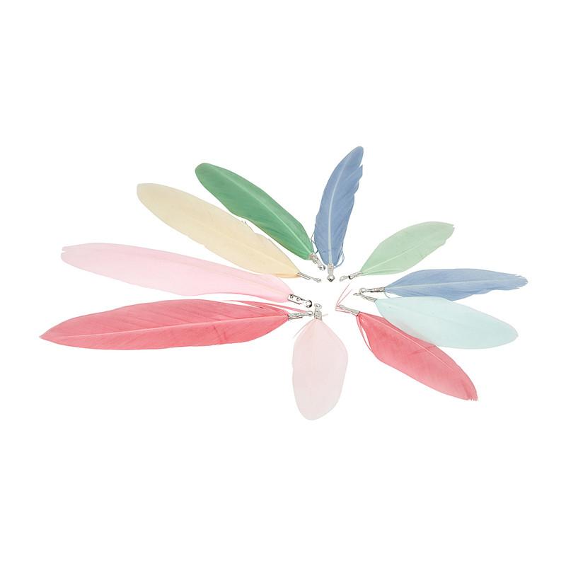 Veertjes multikleur set van 10