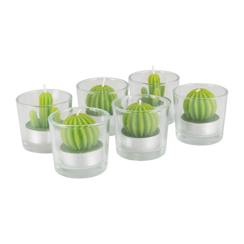 Cactus kaars in glas
