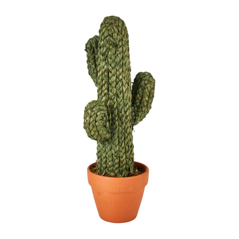 Cactus in pot - groen - 23x18x50 cm