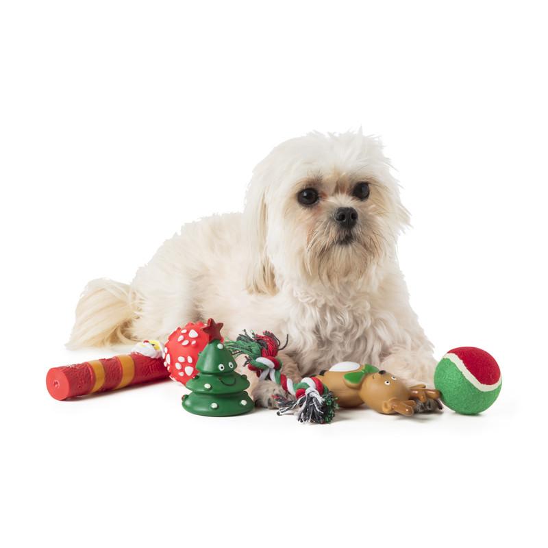Hondenspeelgoed - kerst - set van 6