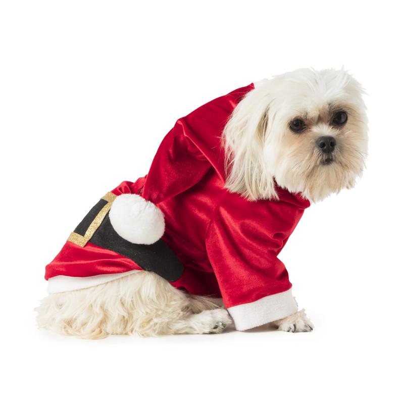 Kerstman pak voor dieren - medium