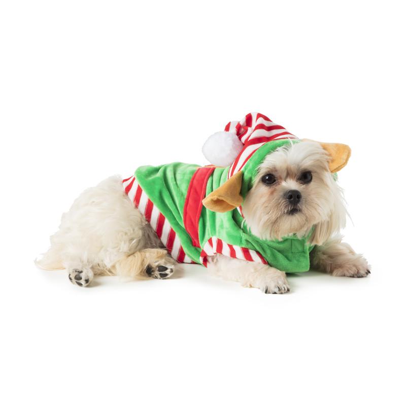 Kerst outfit voor dieren - elf