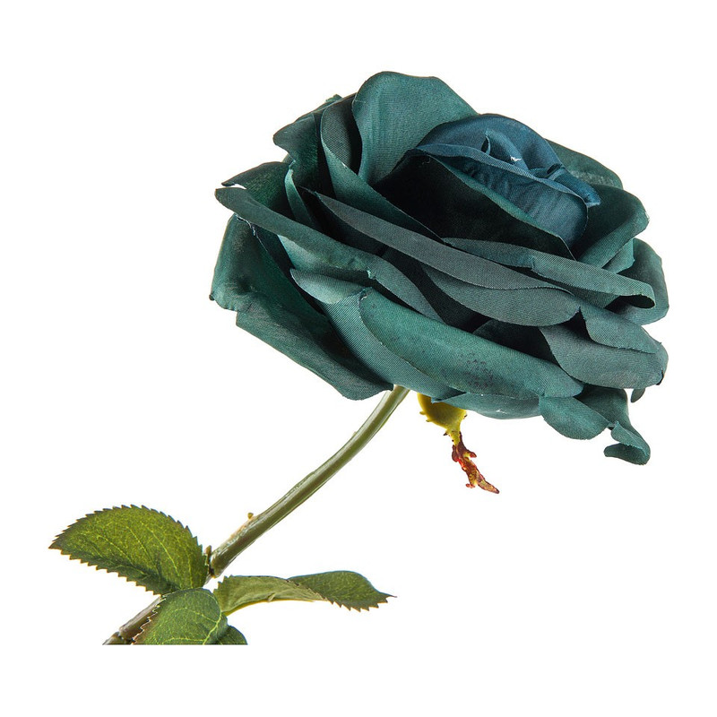 Roos blauw - 66 cm