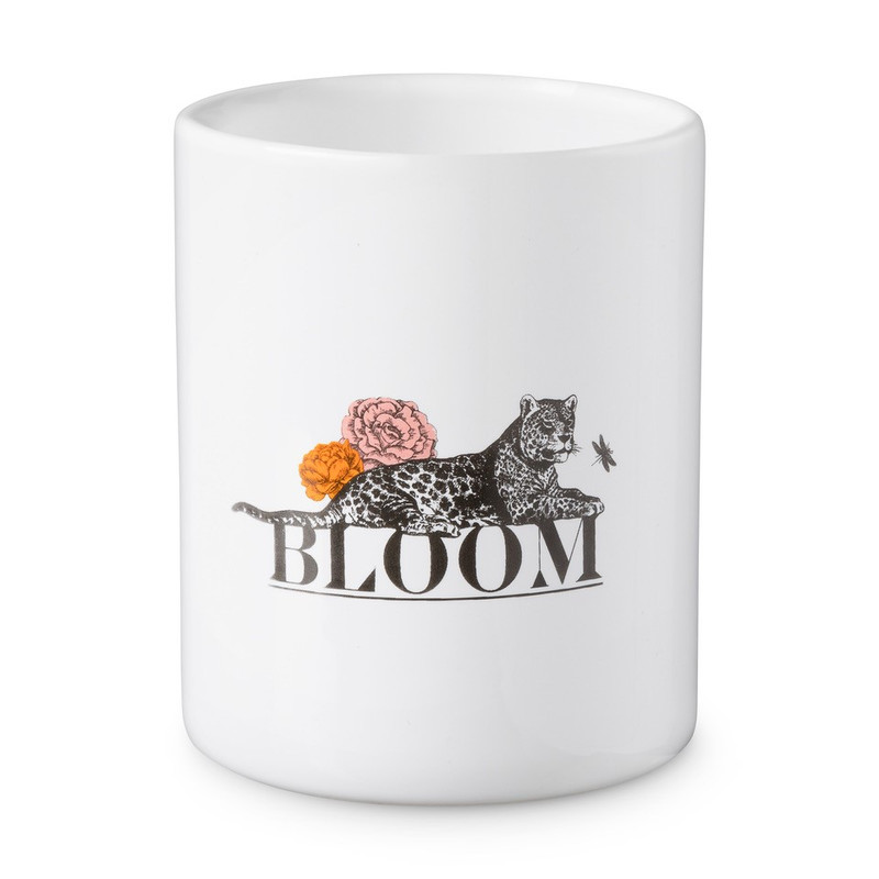 Beker Bloom Da S Leuk Van Xenos