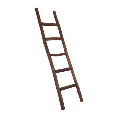 Houten Ladder Xenos.Decoratieve Ladder 170 Cm Bruin Xenos
