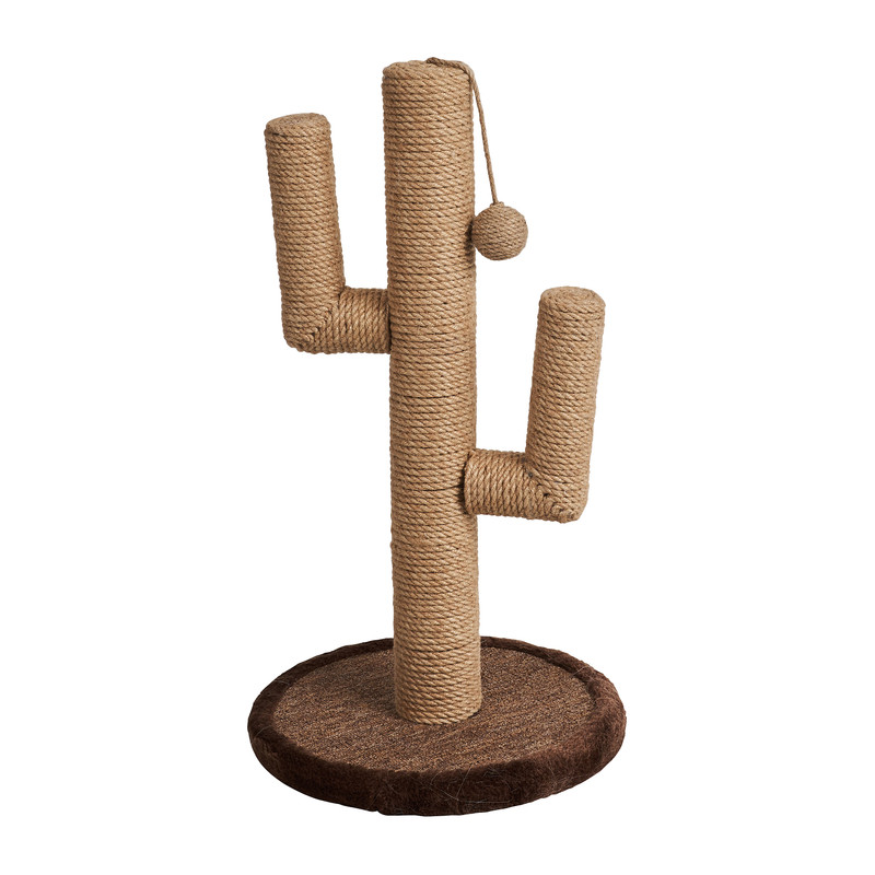 Krabpaal cactus - 34x34x62 cm