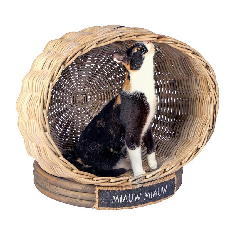 Kattenhuis rond miauw