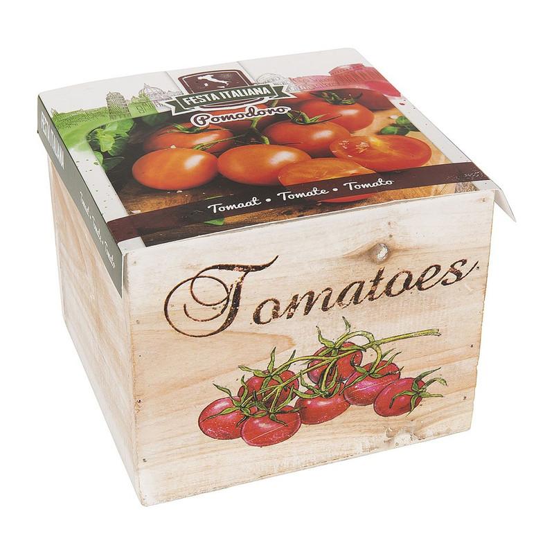 Kweekkist tomaat