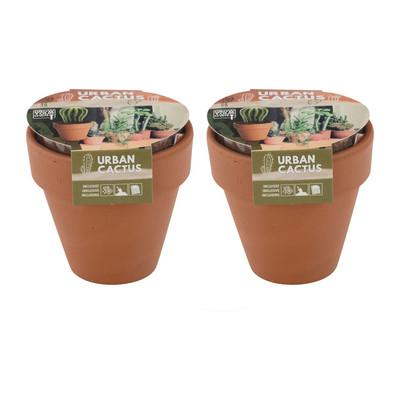 Kweek je eigen cactus - 8.5x8.5 cm - set van 2