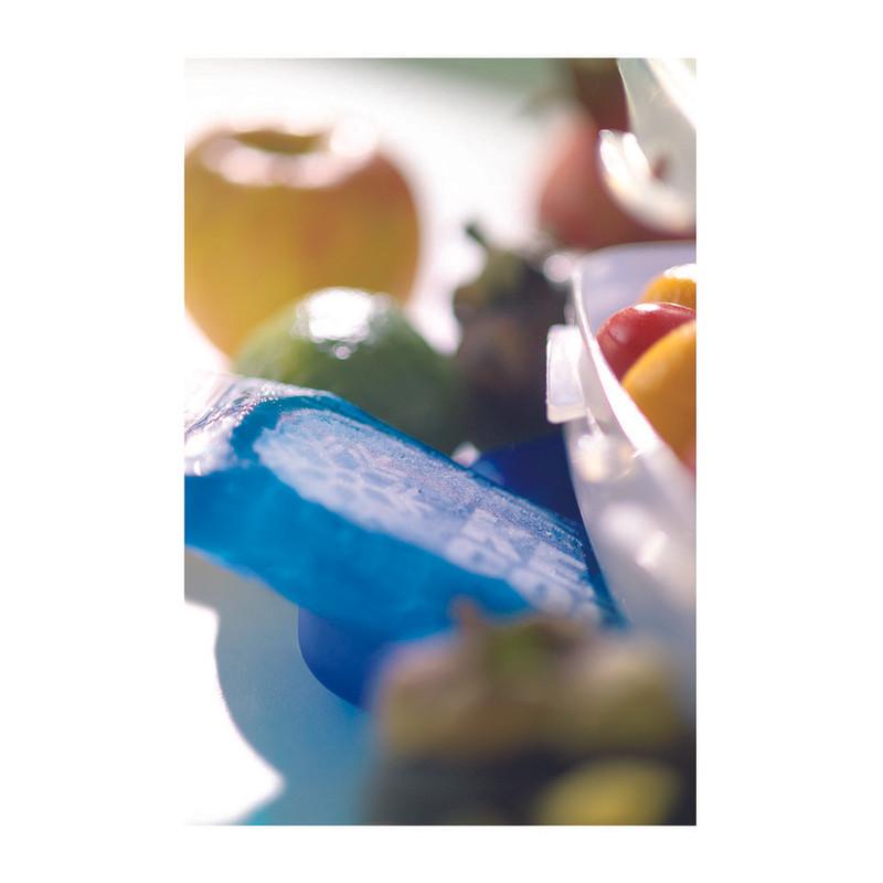 Rotho partybutler cool en fresh - 43x29x11.5 cm